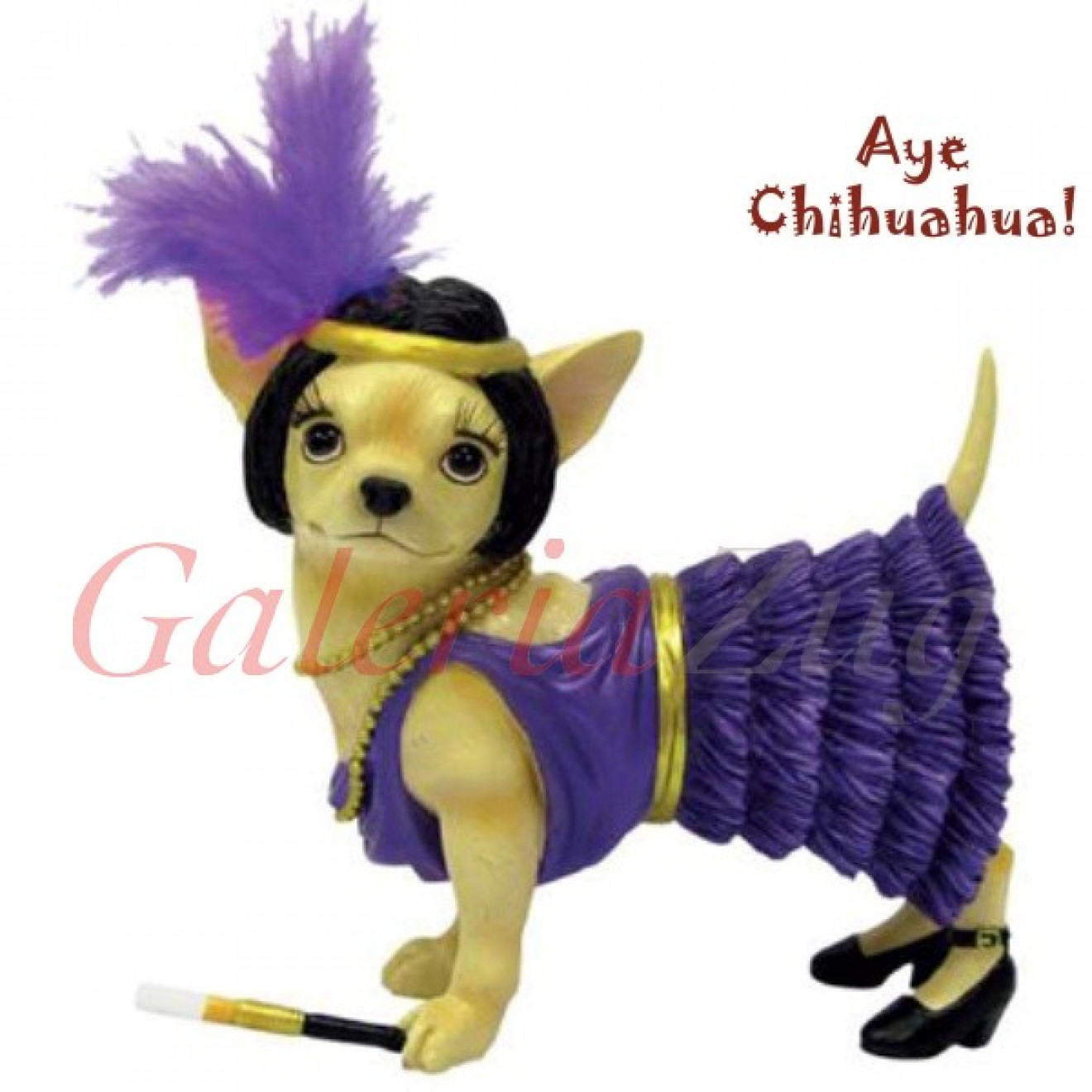 Chihuahua Flapper Dog